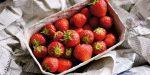 Lebensmittel nachhaltig | austropack © OFI